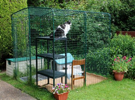 backyard cat pets outdoor cat enclosures