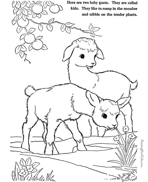 coloring pages for animals vbs pictures to print of animals az coloring pages