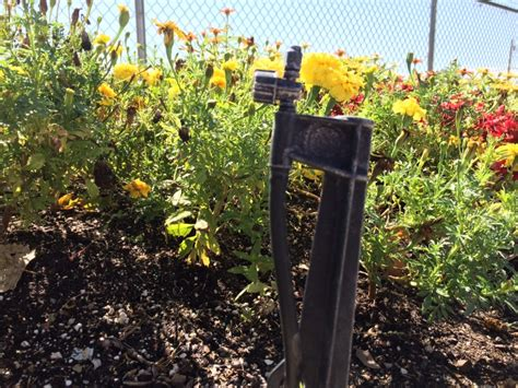 flower bed sprinklers irrigation services