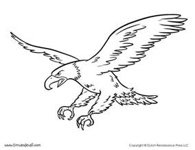 eagle coloring pages bald eagle coloring page tim de vall