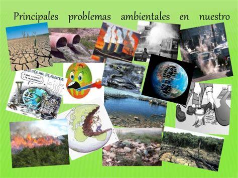 las imagenes artisticas en nuestro entorno blog ecologia problemas ambientales