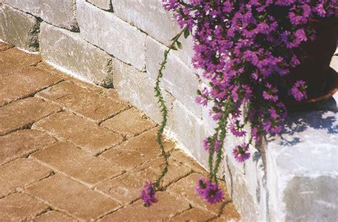 Mediterrane Terrassen 3208 by Friedl Steinwerke Gt Gartentr 228 Ume Gt Produkte Gt Grado Line