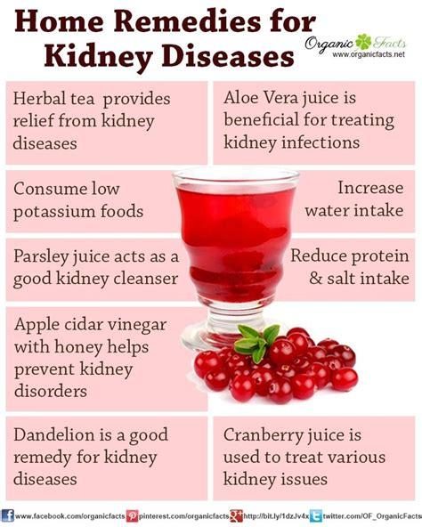 Does Cranberry Juice Detox Your Kidneys by Ckd Stage 3a Diet Coastnews