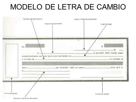 creacion y forma de la letra de cambio los documentos cambiarios ppt video online descargar