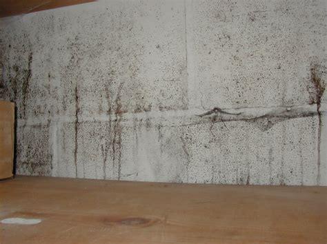 basement finishing drywall in basements mold boston