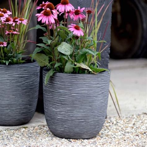 Cadix Planters by Cadix Ribbed Egg Planter Garden