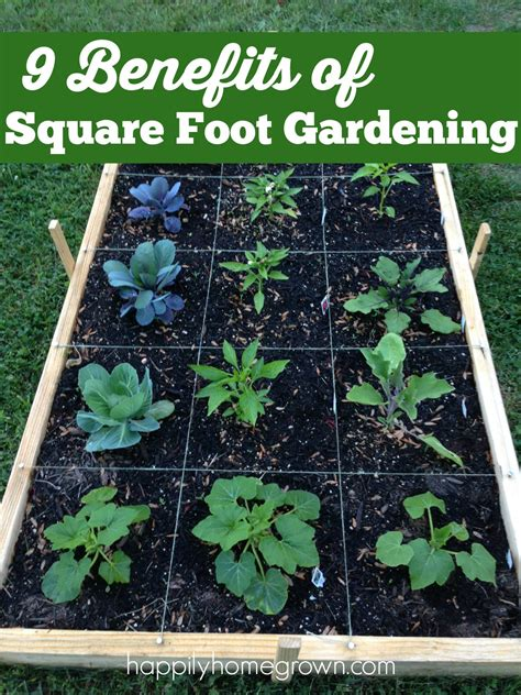 square foot container gardening 9 benefits of square foot gardening happily homegrown
