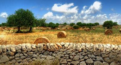 costruire casa su terreno agricolo costruire una casa prefabbricata su terreno agricolo costok