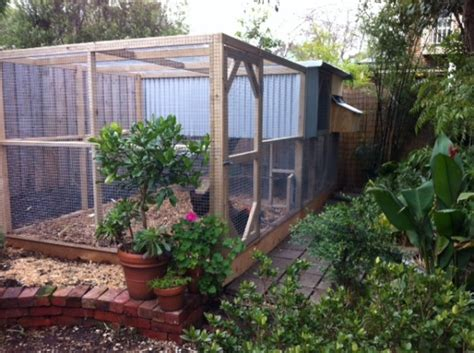 chicken houses pens coops