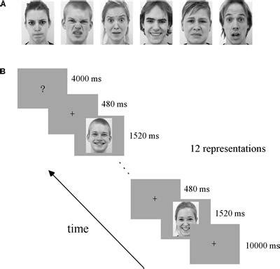 multivariate pattern classification fmri frontiers multivariate pattern classification of facial