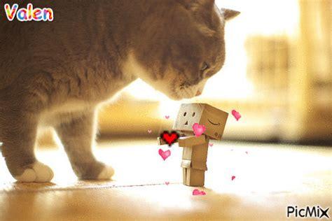 wallpaper danbo gif gif anim 233 danbo chat coeurs amour le blog de