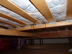 cachettes possibles pour la punaise de lit penntybio