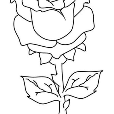 rose petal coloring page girl scout daisy yellow petal hot girls wallpaper