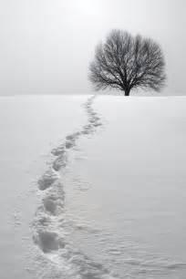 Footprint Garden Path » Ideas Home Design
