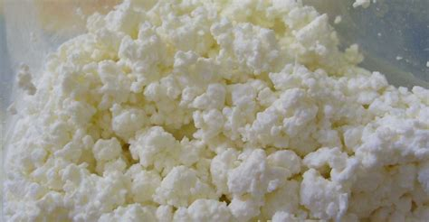 non dairy cottage cheese paleo non dairy cottage cheese from egg whites for 200 220
