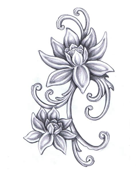 lotus flower drawing images lotus flower drawing images drawing gallery