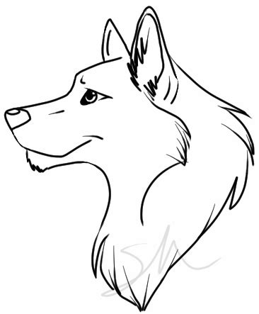 Simple Wolf Outline by Easy Wolf Drawing Clipart Best