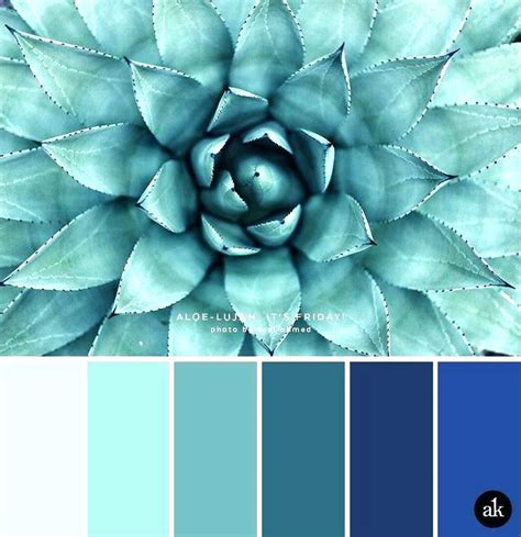 teal color combinations teal colour combination home decor medium size house
