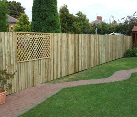 engrossing backyard privacy fence ideas on a budget