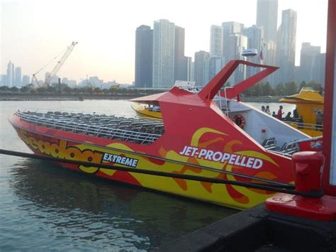 chicago boat tour with dog the extreme thrill ride boat seadog cruises 시카고 사진 트립