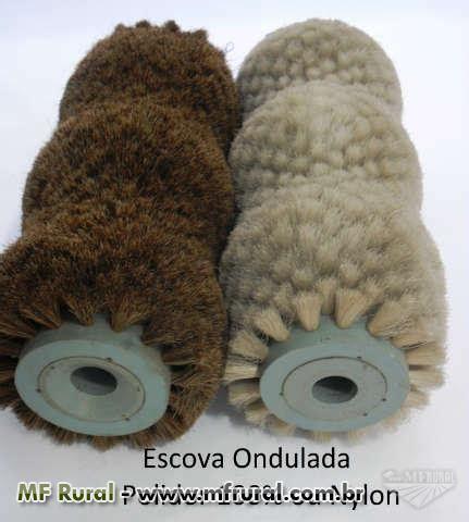 Pita Nilon by Escovas Industriais Em 100 Fibra Coco Pita