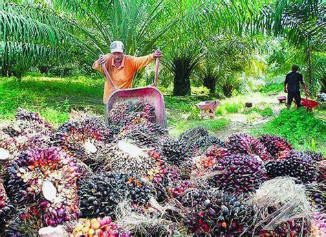 kajian tempatan   jenis jenis perindustrian  malaysia