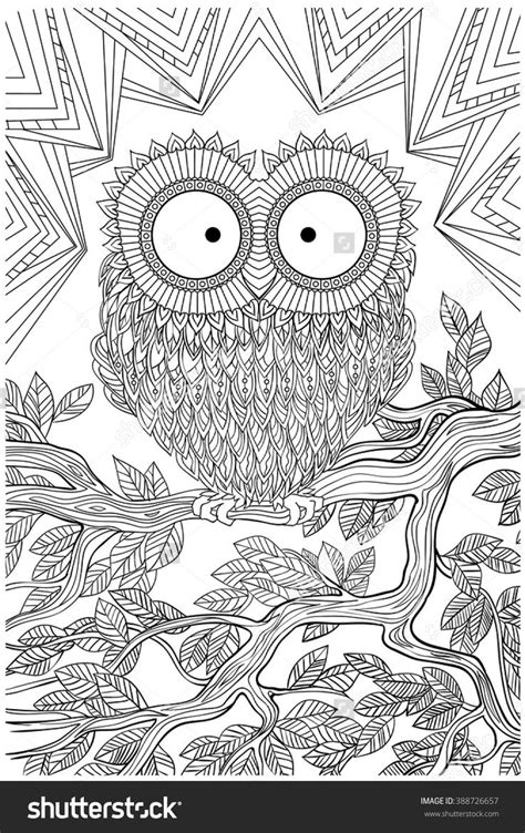 owl zentangle coloring page 320 best buhos 03 colorear images on pinterest owls