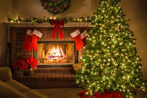 christmas tree pictures images  stock  istock