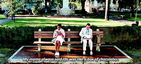 forrest gump park bench scene forrest gump on tumblr