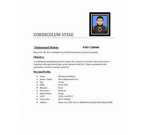 75 format of curriculum vitae for thesis resume format for bank cv templates and guidelines europass yelopaper Image collections