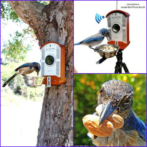 gift ideas for bird lovers and bird watchers gift canyon