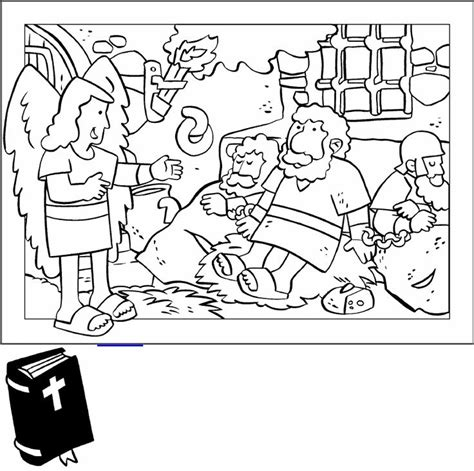 Acts 5 Coloring Pages by 60 Best New Acts Images On Bible Pictures