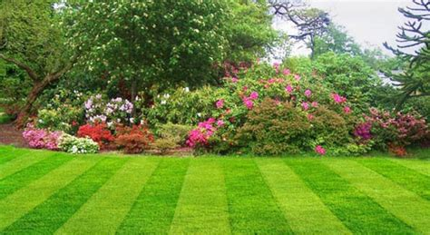 What Is The Meaning Of Backyard The Meaning And Symbolism Of The Word Garden