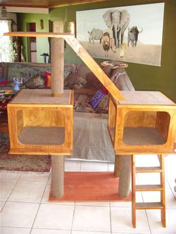 Woodworking Forum South Africa Diy Woodworking Project