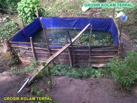 Jual Kolam Terpal Ikan Nila budidaya ikan nila di kolam terpal agro terpal