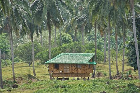 Modern Wallpaper by File Nipa Hut Taken At Magdalena Laguna Philippines On 2011 April Photo 1 Jpg Wikimedia Commons