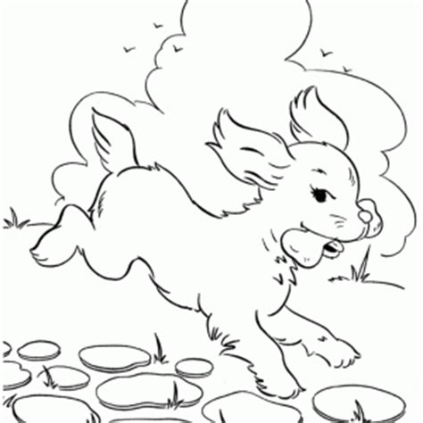 dog running coloring page dog running coloring pages coloring pages