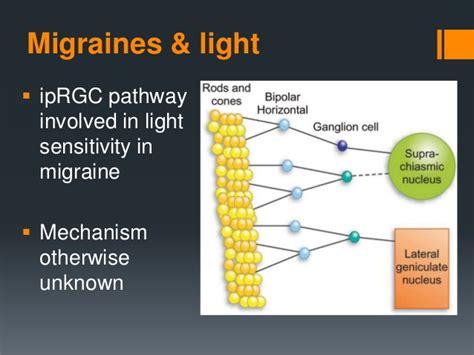 eye pain and light sensitivity a neural mechanism for exacerbation of headache by light