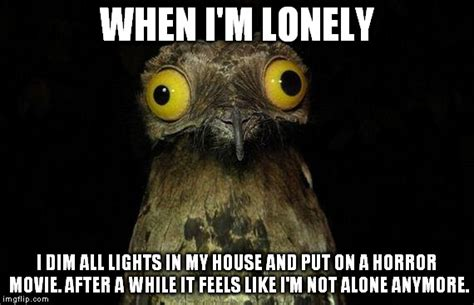 Lonely Meme - weird stuff i do potoo meme imgflip