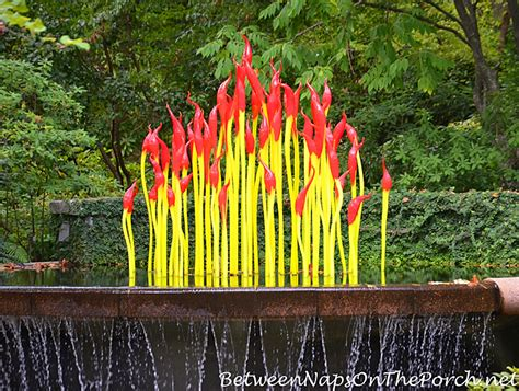 the atlanta botanical gardens chihuly in the garden atlanta botanical garden 2016