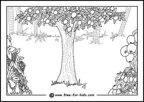 garden of eden printable activity sheets blank eden colouring page bijbel schepping adam en eva