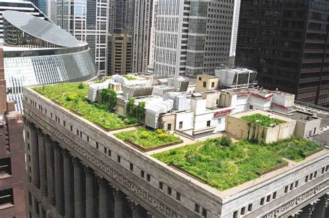 Green Roofs A Useful Solution To Embellish Our Home And | green roofs a useful solution to embellish our home and