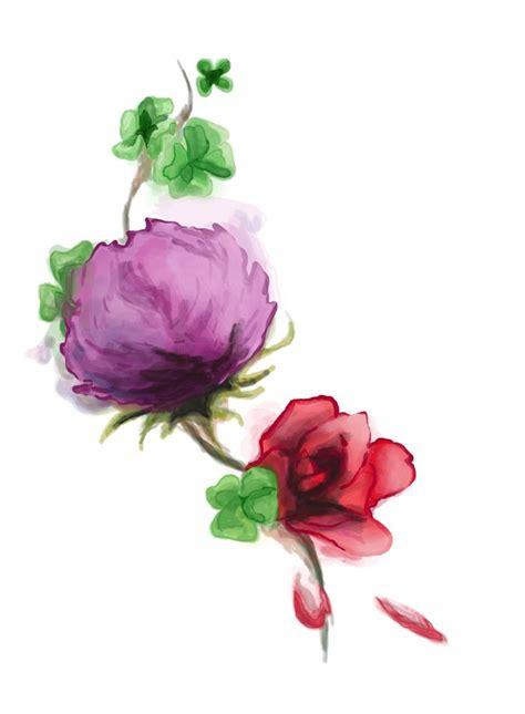 rose and thistle tattoo designs thistle shamrock watercolor by autobiotix deviantart