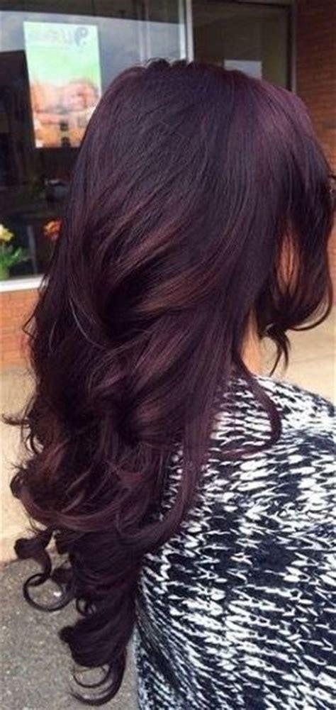 photos purple highlights for dark hair warm dark brown 1000 ideas about fall winter hair color on pinterest