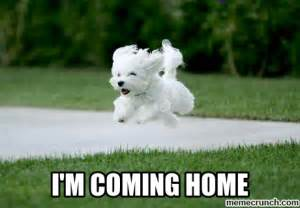 i m coming home