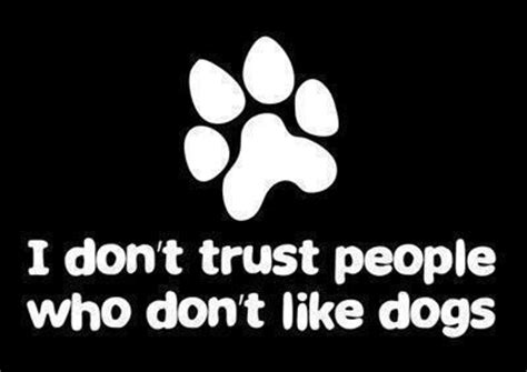 i dont like dogs i don t trust who don t like dogs animals