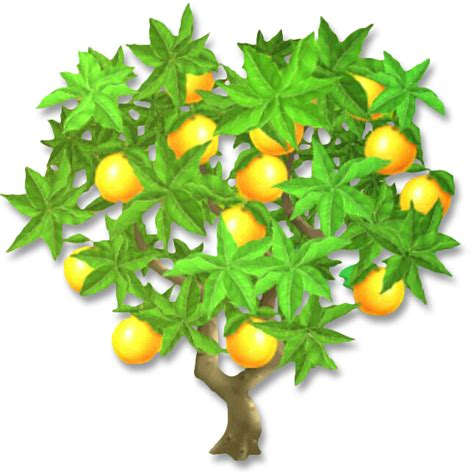 image orange tree png hay day wiki fandom powered by