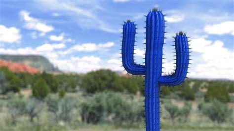 Unique Kaktus unique quality made in germany
