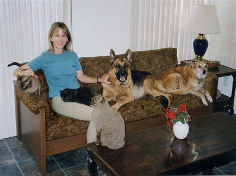 dog friendly couches pet resistant cat or dog friendly furniture sofas and chairs