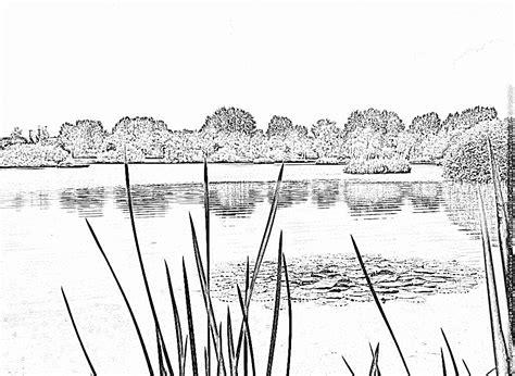 imagenes para colorear water dibujos para colorear y pintar los lirios de agua en un